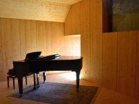 Salle de musique sous un toit (2015)